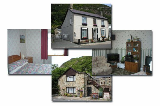 Ty Newydd B&B and Self Catering